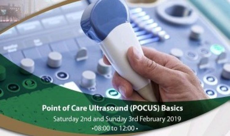 Point of Care Ultrasound (POCUS) Basics