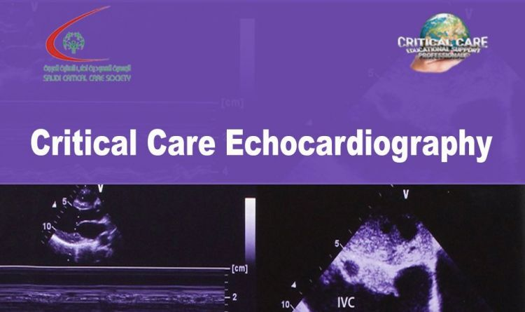 Critical Care Echocardiography